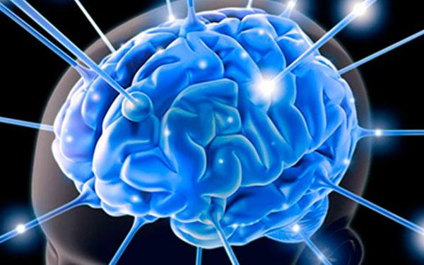 Эффективные способы развития памяти