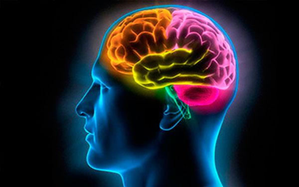 5 способов для развития мозговой деятельности